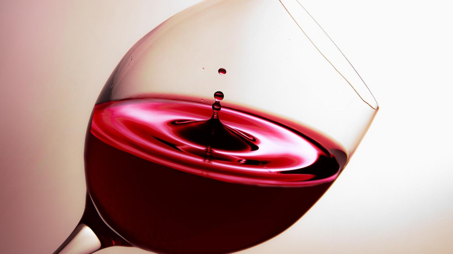 Pourquoi consulter des sites sur le vin Pic Saint-Loup ?