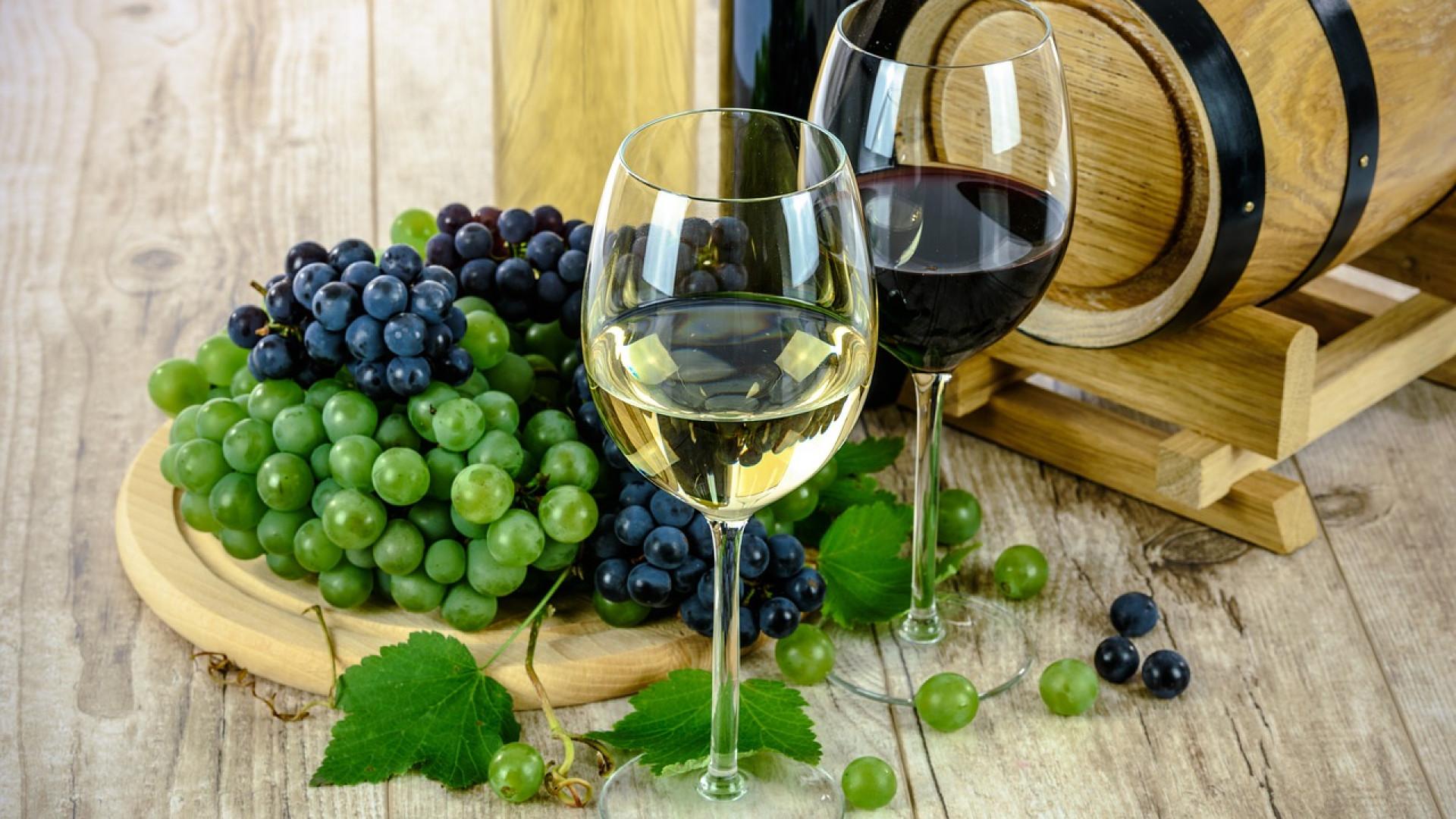 Pourquoi suivre des blogs sur les vins ?